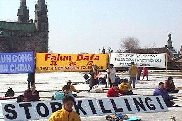 2002年3月傳出江澤民集團對大陸法輪功學員下達的滅絕人性的開槍射殺命令時,加拿大法輪功學員決定前往渥太華的國會山莊,舉行上百人36小時的絕食抗議(明慧網)